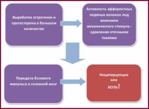 Схема развития болезни в груди