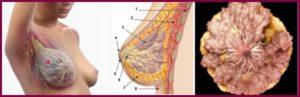 Железо молочный фиброзный 8