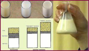 От чего зависит жирность грудного молока?