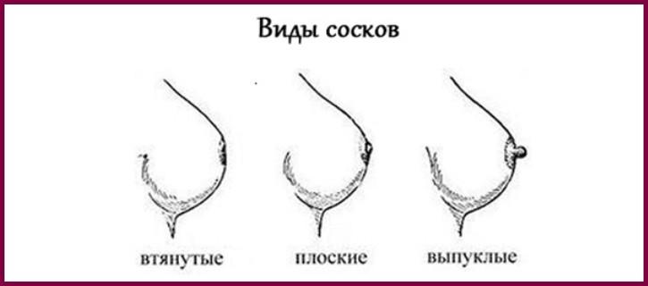 Какие бываю виды сосков?